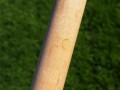 Andy Gilbert Titlist Conversion Cue (23)