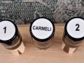 Carmeli Joint Protectors (10)